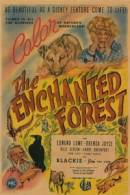 Enchanted Forest, The