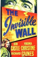 Invisible Wall, The