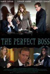 The Perfect Boss